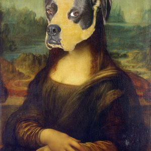 Rescue Dog Photography Mona Lisa
