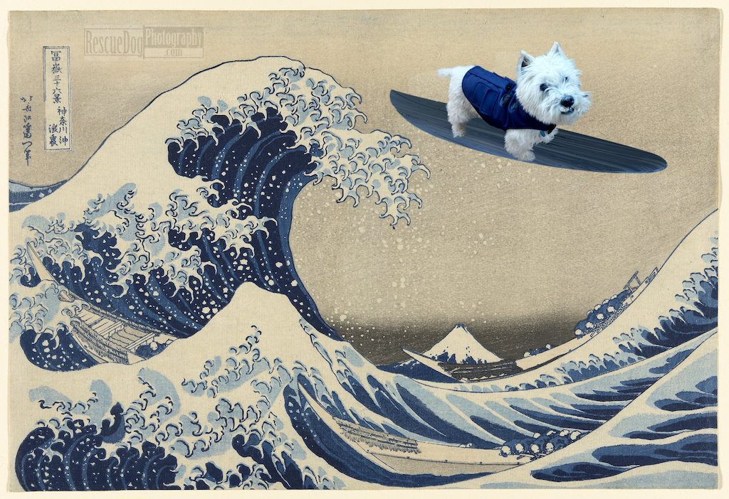 Rescue Dog Photography The Great Wave Hokusai