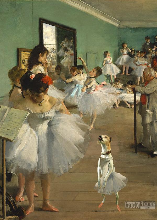 Rescue Dog Degas The Ballet Class