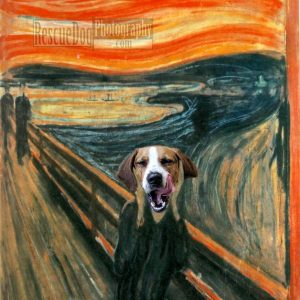 Rescue-Dog-The-Scream-Edvard-Munch