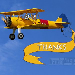 RescueDogBiplaneThanks