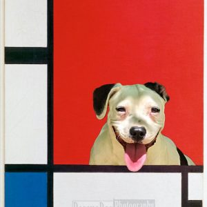 Rescue Dog Piet Mondrian