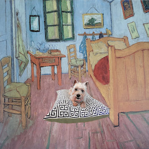 Rescue Dog Fine Art Prints